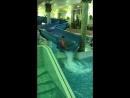 Тропическая купальня!