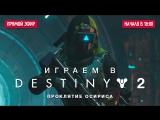Играем в кооператив Destiny 2 Проклятие Осириса
