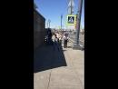 Сигвей - экскурсии, прогулки, аренда СПб Питер — Live
