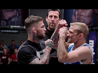 Garbrandt vs Dillashaw promo by Natural Born MMA Fan