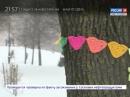 ВЕСТИ 24 Санкт Петербург от 16 02 2018 россия24 vestispb вестиспб vesti spbnews