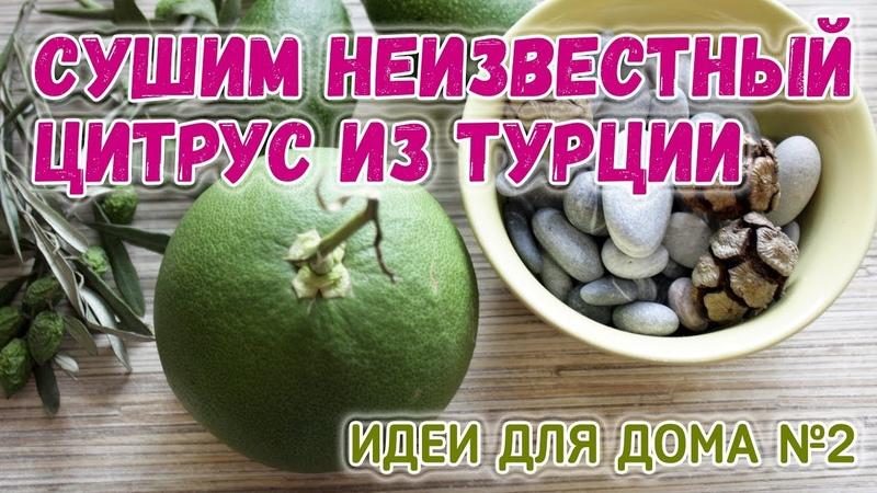 Сушим неизвестный цитрус из Турции ☀️ Как сушить апельсины в духовке 🌼 Идеи для дома