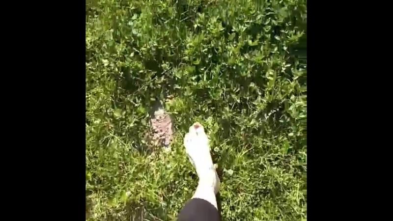 Босиком по росе