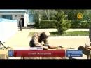 Казахстанских военнослужащих отправят в Ливан для участия в миротворческой мисси