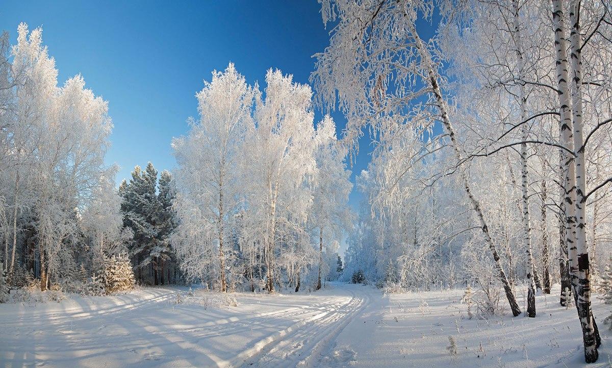 Русская природа картинки зимой