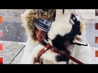 ❤ Любимой Диане❤ 1280x720 3,78Mbps 2017-11-01 13-37-55.mp4