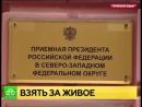 Живая линия в СПб нам нужен закон о защите животных