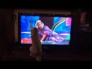 Любимое домашнее животное )🤣😘 Самый внимательный телезритель домашнееживотное кот comedywoman приколы умора😂