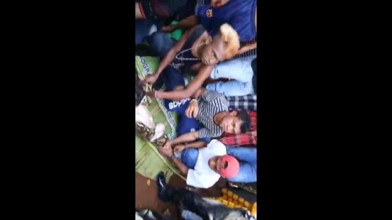 Anaconda engole culher » Freewka.com - Смотреть онлайн в хорощем качестве