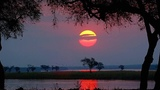 Sunset Mana Pools National Park
