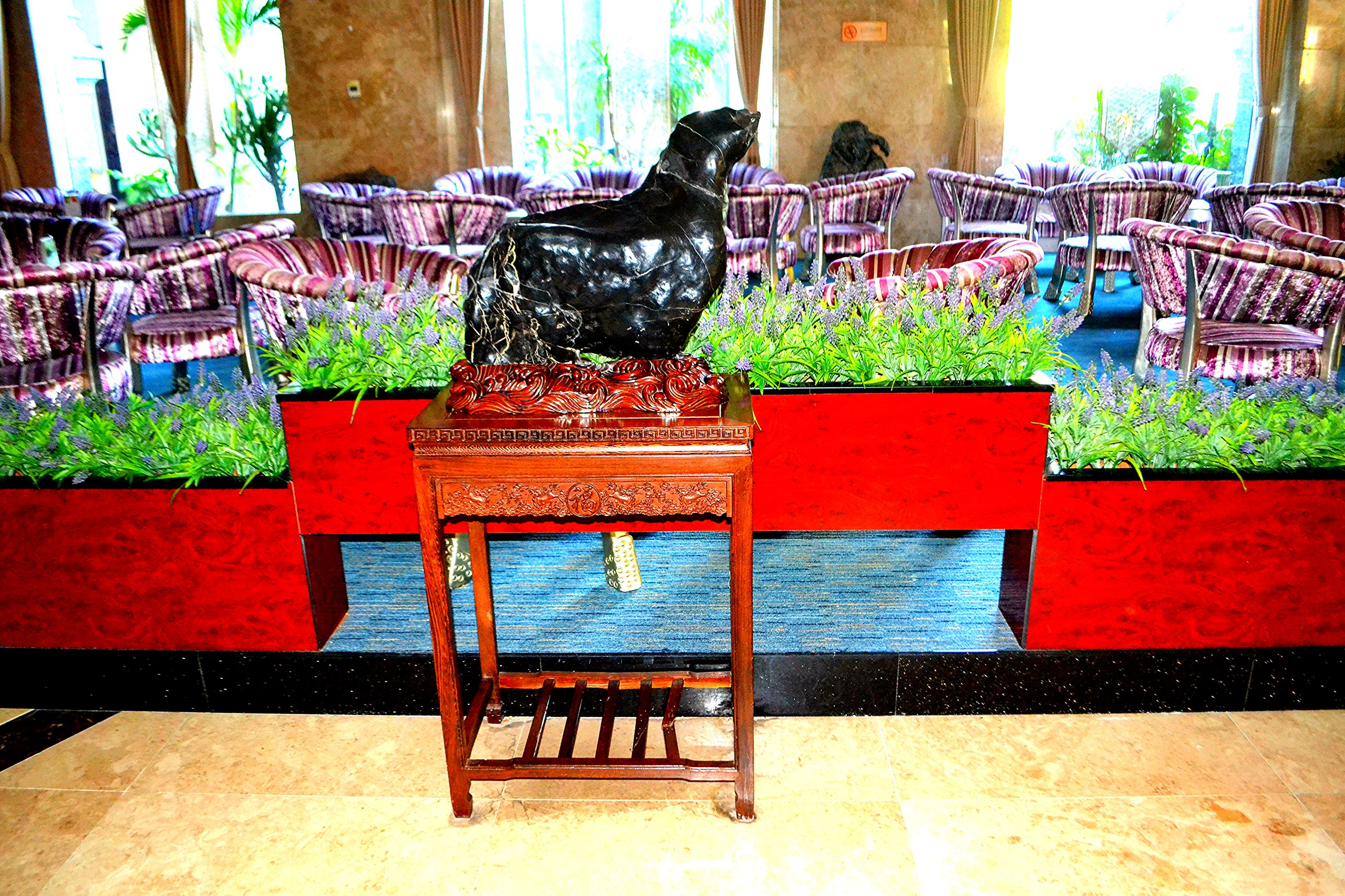 Елена Руденко (Валтея). Китай, о.Хайнань, г.Санья. (фото) NSd-qYFfHgw