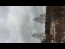 Бобры размыли плотину в Кизнерском районе