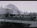 Kew Gardens - History of the Palm House