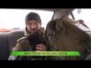 Автостопом по России с котом