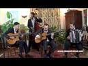 La foule Ambiance guinguette avec accordéon pour mariages Clément Reboul
