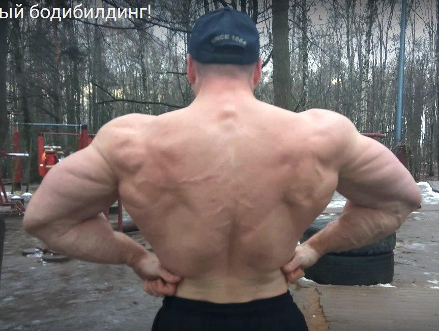 Михаил клестов тренировки для натуралов