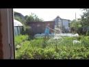 Во саду ли в огороде 2