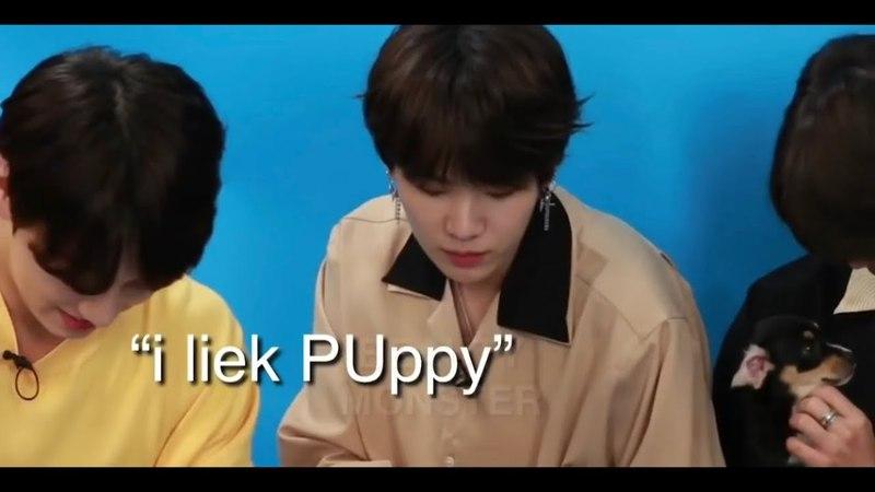 I liek puppy - suga