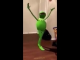 Kermit Me always
