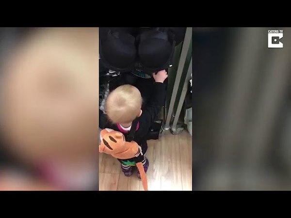 Маленький мальчик не может найти содержимого бюстгальтера