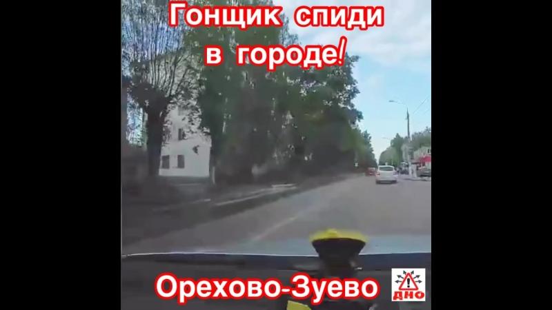 Летун торопыга Орехово-Зуево