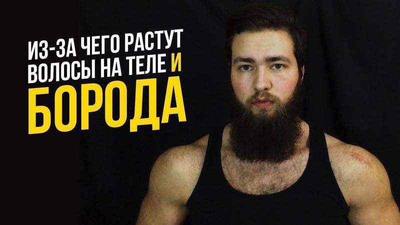 Почему растут борода и волосы на теле у мужчин Тестостерон Дигидротестостерон АР