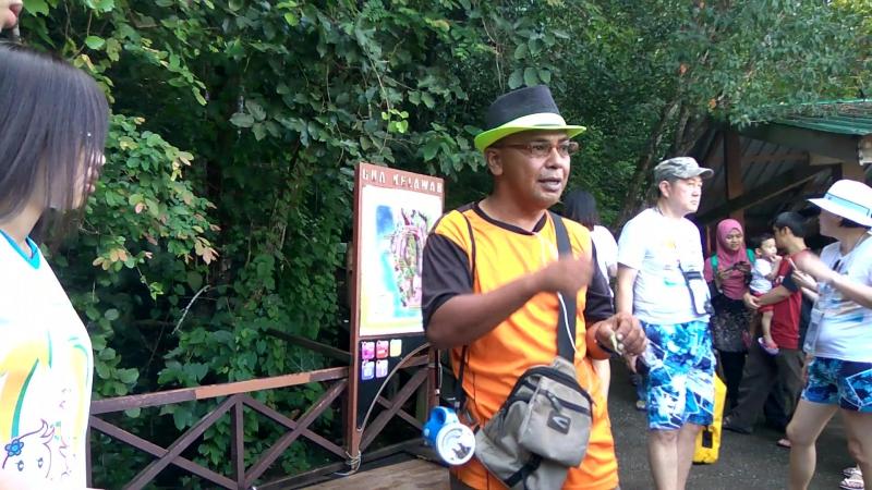 Langkawi - Kilim Geoforest Park 2