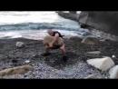 Виктор Блуд - Подъем Природного Камня На Плечо