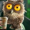 Coffee Owl Youtube