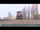 Жетісулық шаруалар биыл қант қызылшасы егілетін алқаптарды 2000 гектарға ұлғайтып 11 2 мың гектарға жеткізбек