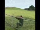 Прыжки через забор лайк э босс