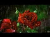 Фредерик Шопен. Вальс дождя