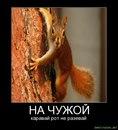 Альбина Бикчурова фото #29