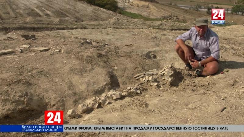 Палеонтологи изучают останки древнего кита Окаменевшие кости нашли на участке будущей железной дороги подхода к Крымскому мосту