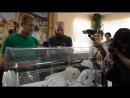 Презентация редчайших кошек .Тайган .Крым