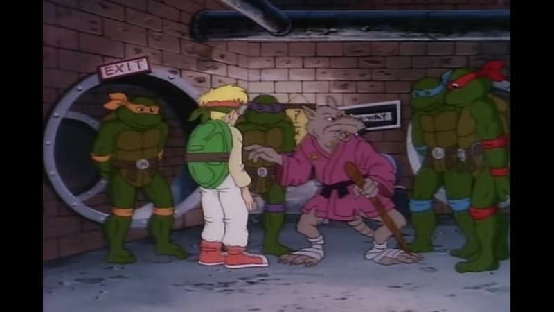 28. The Fifth Turtle[cartoons.flybb.ru]