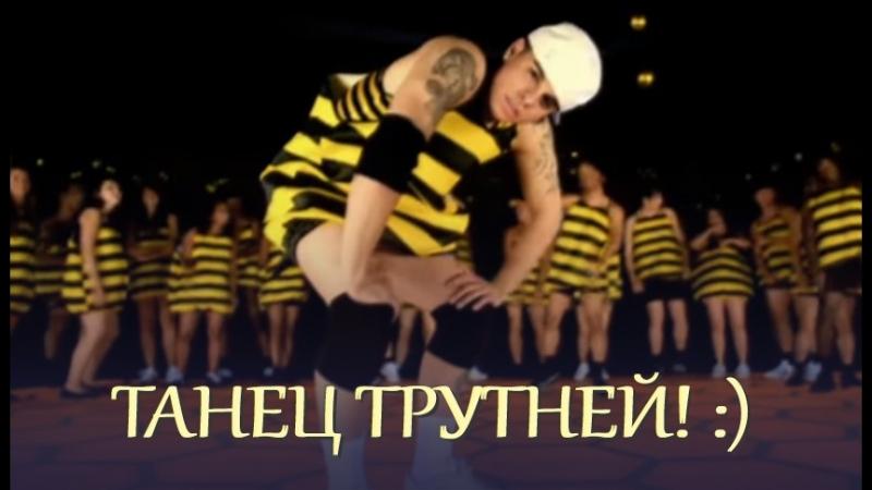 Танец трутней - В помощь медоносной пчеле!