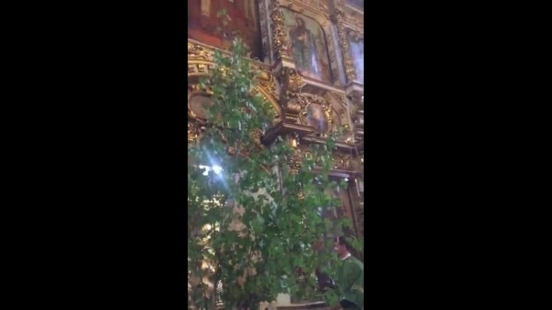 Праздник Троицы в Донском монастыре-2