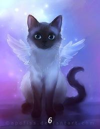 картинки котов воителей аниме