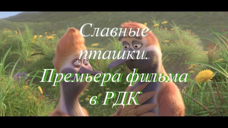 Рекламма кфильму ( Славные пташки )