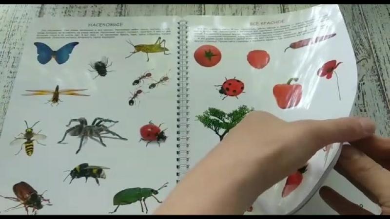 Многоразовая Рабочая Тетрадь №0 Познание для детей от 1 года