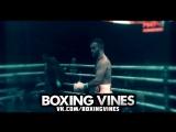 gassiev | HETAG / (Boxing Vines) l vk.com/boxingvines
