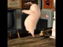 Pig is happy