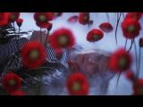 Nirvana - Heart-Shaped Box  ᴴᴰ 1080p (Official Video) 1993 director cut - Anton Corbijn