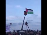 Un grand drapeau de la Palestine a