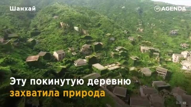 Таинственная деревня-призрак_ жизнь после людей