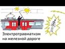 Стоит узнать А Вы в зоне риска Как не погибнуть на железной дороге от электротравмы