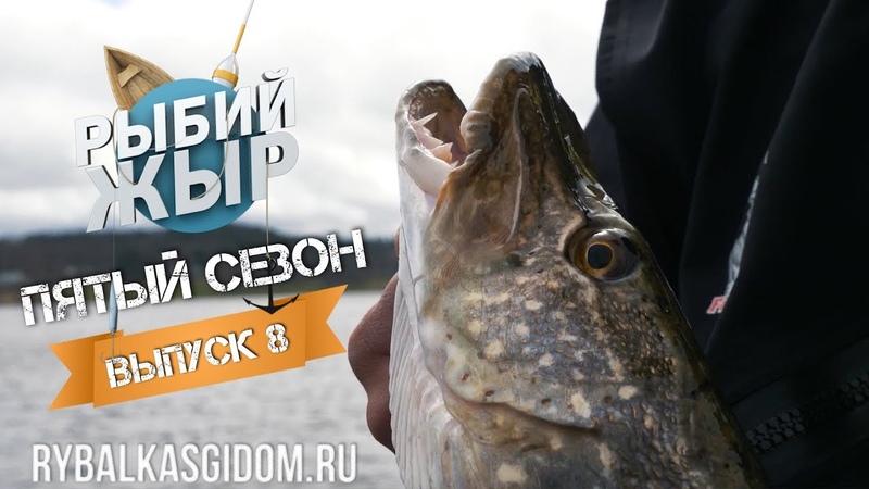 Клев трофейной щуки и рыболовные приметы, в чем связь Рыбий жЫр 5 сезон выпуск 8