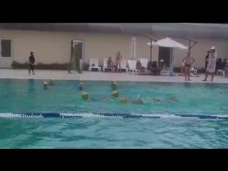 Синхронное плавание. Пансионат Лучезарный