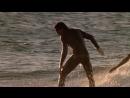 На гребне волны. 1991. Боевик, триллер, криминал. Патрик Суэйзи, Киану Ривз, Гэри Бьюзи, Лори Петти.
